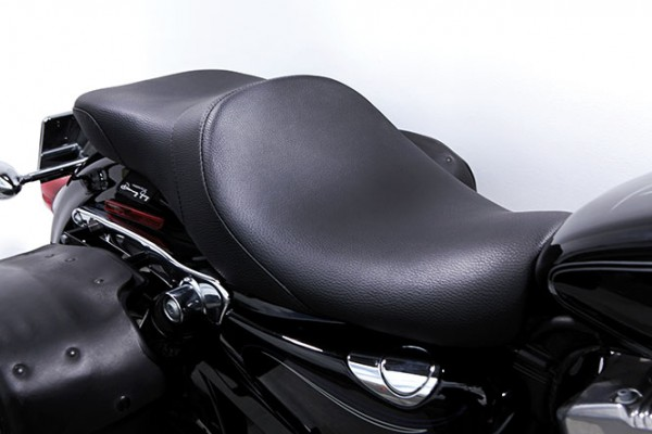 Danny Gray IST Lowist 2-Up for Sportster models, Vinyl